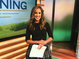 Reporter and news anchor Chantel Mccabe image